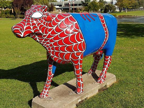 Shepparton, Australie : Spider cow