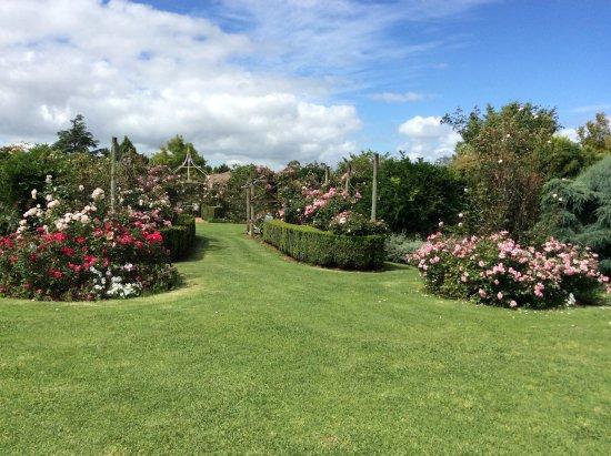 Brindabella Country Garden