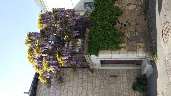Chinon, France: 20170422_164727_large.jpg