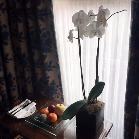 Egerton House Hotel: Fresh flower and welcome fruits (which they refill throughout the stay)