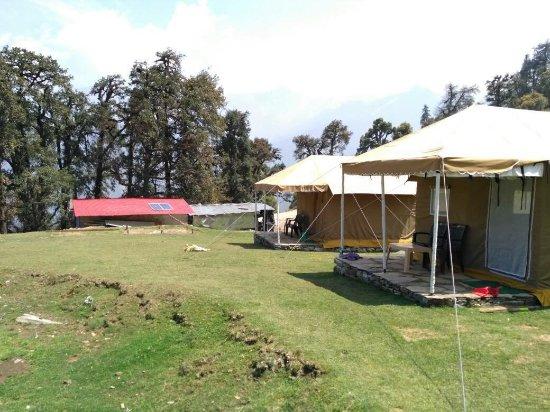 Chopta Meadows Heritage Camps照片