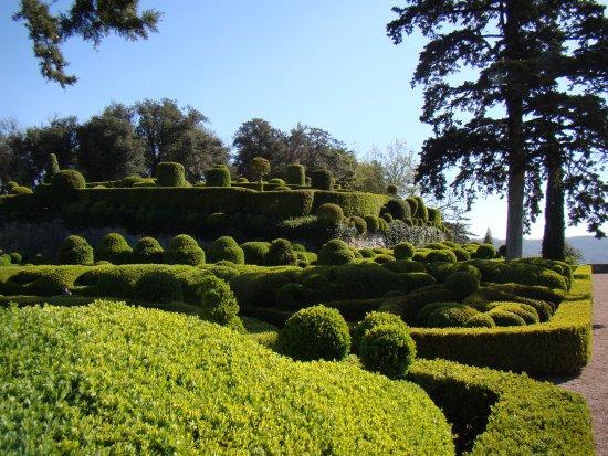 Les Jardins de Marqueyssac : les buis