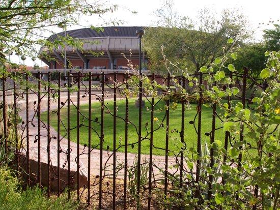 Tempe, AZ: fence