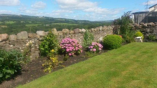 Plas Newydd Farm B&B: Front garden