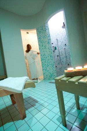 Bagno Turco A Palermo.Area Benessere Con Sauna Bagno Turco Doccia Ionizzante Picture