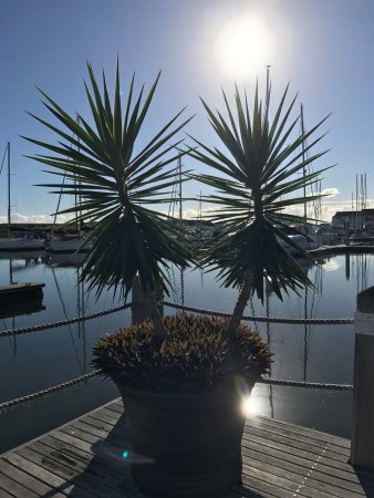 Hope Island, Australia: Great stay, nice hotel. Our room had views over the marina