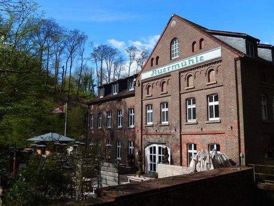 Ratingen, Niemcy: Auermühle - Seite zum See