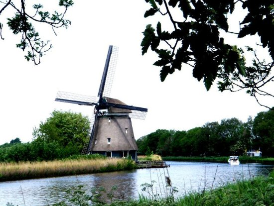 Heerhugowaard, Países Bajos: windmills close to this restaurant, it is  a pity not to notice