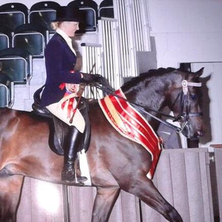 Llanedi, UK: Our daughter Victoria on Supreme Champion Horse Whalton Forgery