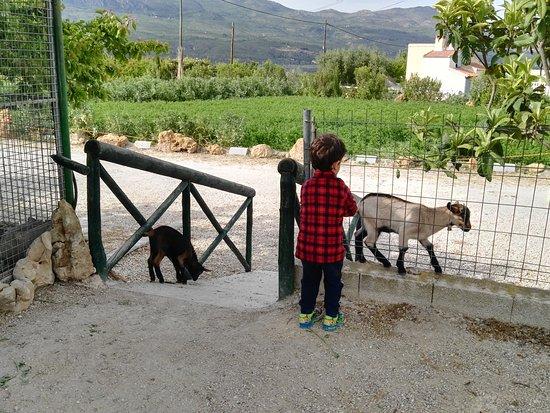 Moratalla, Spanien: IMG_20170422_175704_large.jpg