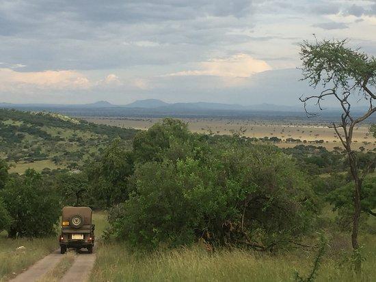 Singita Sasakwa Lodge: Heading off from Sasakwa to the plains