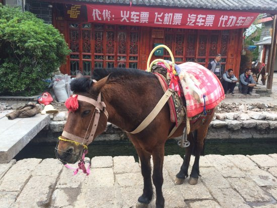 Shuhe Ancient Town: Ride the Horses!