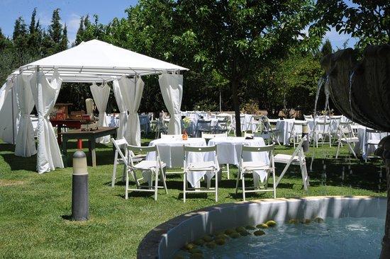 Amplios jardines para eventos picture of restaurante el for Jardines para eventos