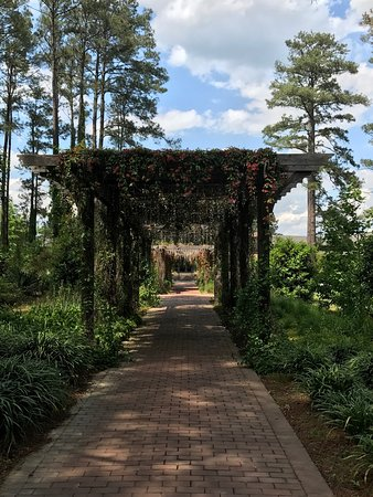 Cape Fear Botanical Garden Picture Of Cape Fear Botanical Garden Fayetteville Tripadvisor