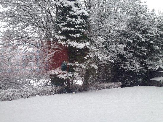 Blairgowrie, UK: Glenshieling House