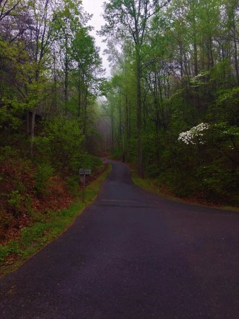 Street view picture of cabins of the smoky mountains for Www cabins of the smoky mountains com