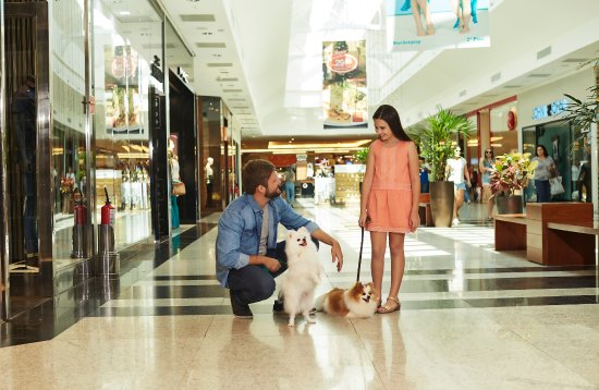 1º centro comercial dog friendly
