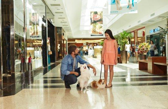 Natal Shopping Center: Shopping é dog friendly, está aberto aos pets de porte pequeno e médio.