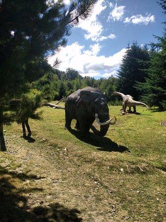 Parque Nahuelito 사진