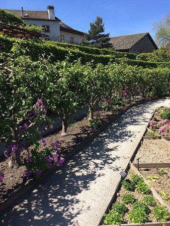 Picture of jardin des cinq sens yvoire for Jardin des 5 sens yvoire