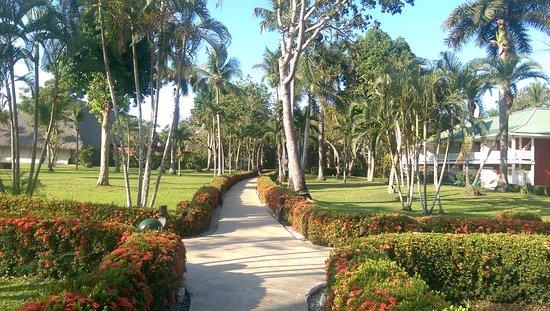 Tambor, Costa Rica: IMAG0276_large.jpg
