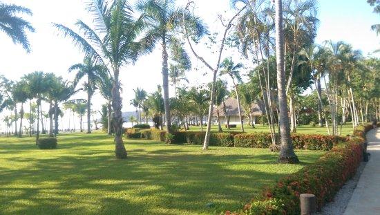 Tambor, Costa Rica: IMAG0273_large.jpg
