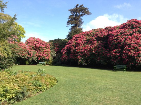 St Austell, UK: Heligan at Easter 2017