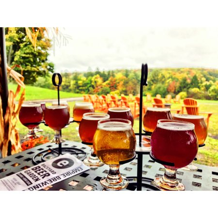 Cazenovia, NY: Beer flights & foliage