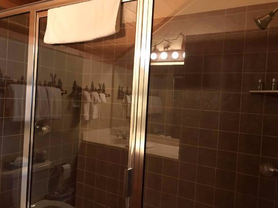 Nisswa, MN: Two person shower