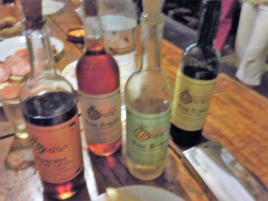 Les vins en dégustation