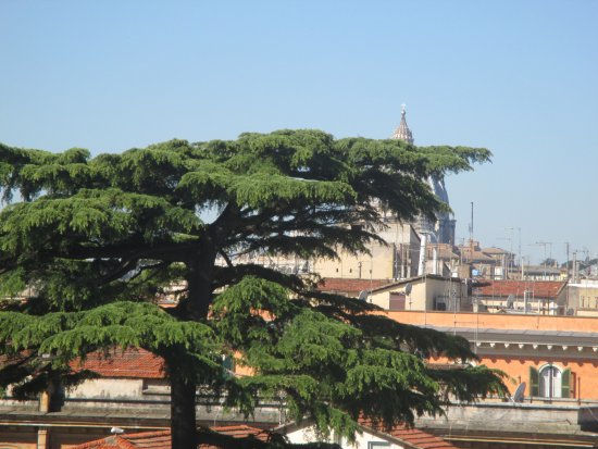 NH Roma Leonardo da Vinci: Vista Cupolone