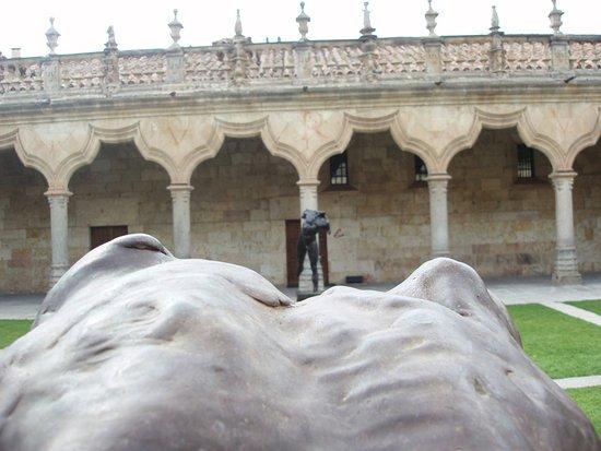 Universidad de Salamanca: claustro