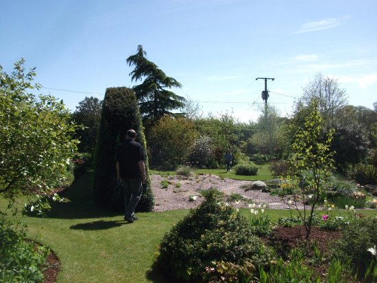 Dutton, UK: Gravel garden