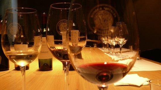 La Posada de Bodega Vistalba: Degustacion de sus vinos y visita a la bodega con guia sin cargo con el hospedaje.