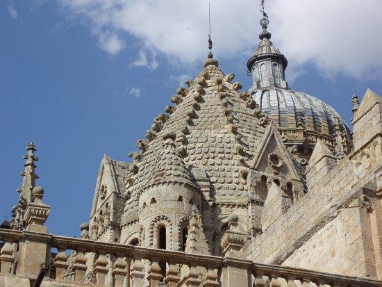 Photo of Church Catedral de Salamanca at Pl. De Anaya, Salamanca 37008, Spain