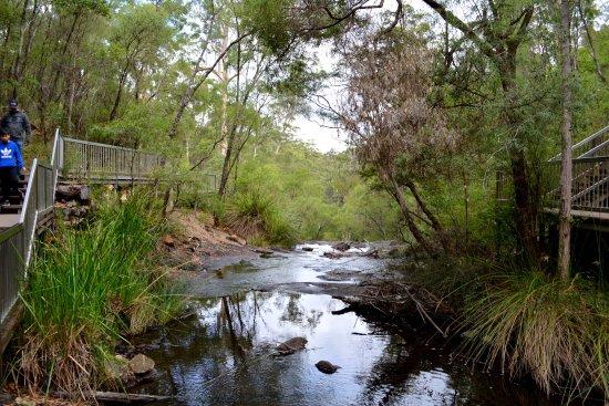 Pemberton, Australien: photo3.jpg
