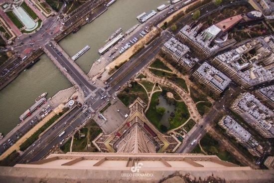 Cultival: Torre Eiffel desde la punta