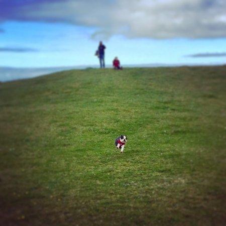 Roundstone, Ireland: photo3.jpg