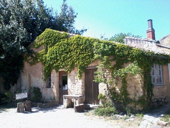 Blaye, Fransa: Maisons régionales