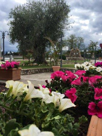 Gallicano nel Lazio, Italy: Fiori