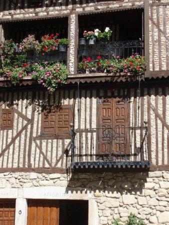 Mogarraz, إسبانيا: flores