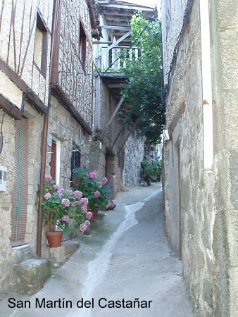 San Martin del Castanar 사진