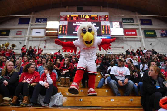 West Hartford, CT: Howie The Hawk Mascot during a basketball game