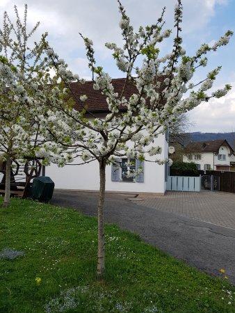 Hotel Sternen Aarau