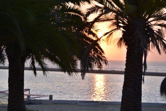 San Alfonso del Mar Εικόνα