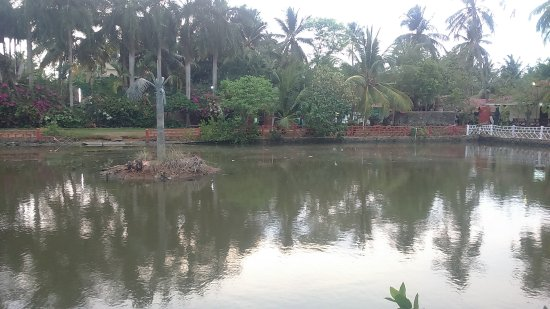 Country Club Rock Springs : The pond in the vicinity stinks and thousands of mosquitoes are all set to attack you...
