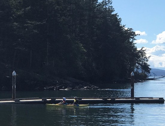 Anacortes, WA: Kayakers returning to Washington Park Boat Launch on a sunny afternoon.