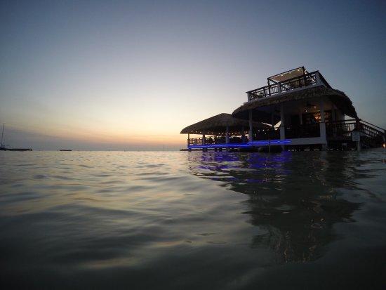 Caye Caulker, Belize : photo4.jpg