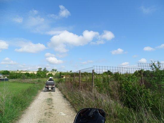 Serre di Rapolano, Italien: In tour per le campagne senesi