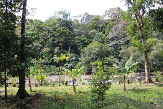 Sarapiqui, Costa Rica: The river front